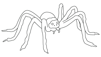 4e517345e6 further Spider Halloween Pumpkin Stencil together with Animals moreover Halloween Activities Spider furthermore Halloween. on tarantula spider